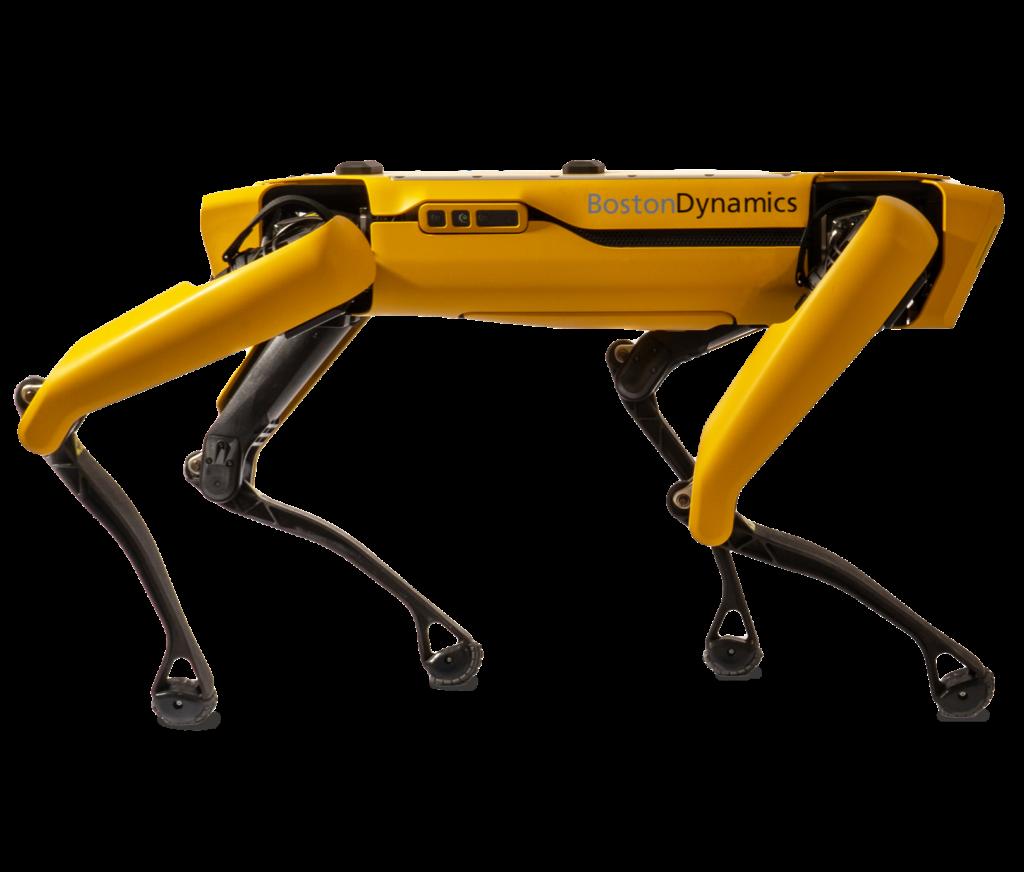 Discover Spot Robot